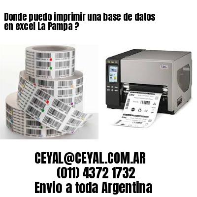 Donde puedo imprimir una base de datos en excel La Pampa ?
