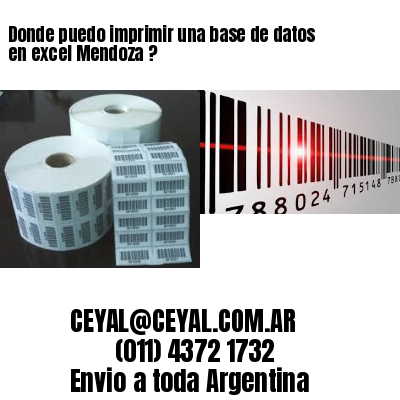 Donde puedo imprimir una base de datos en excel Mendoza ?